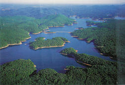 Ariel Photo Of Lake Allatoona