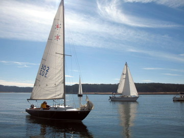 Lake Allatoona Sailing and Boating